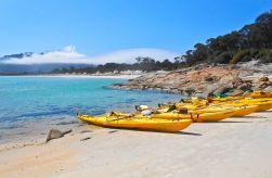 Hazards Beach Campsite_preview