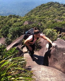 Track notes for hiking Mt Bartle Frere by Spirit Quest Travel