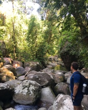 Explore Wooroonooran National Park | Mt Bartle Frere hike with Spirit Quest Travel.